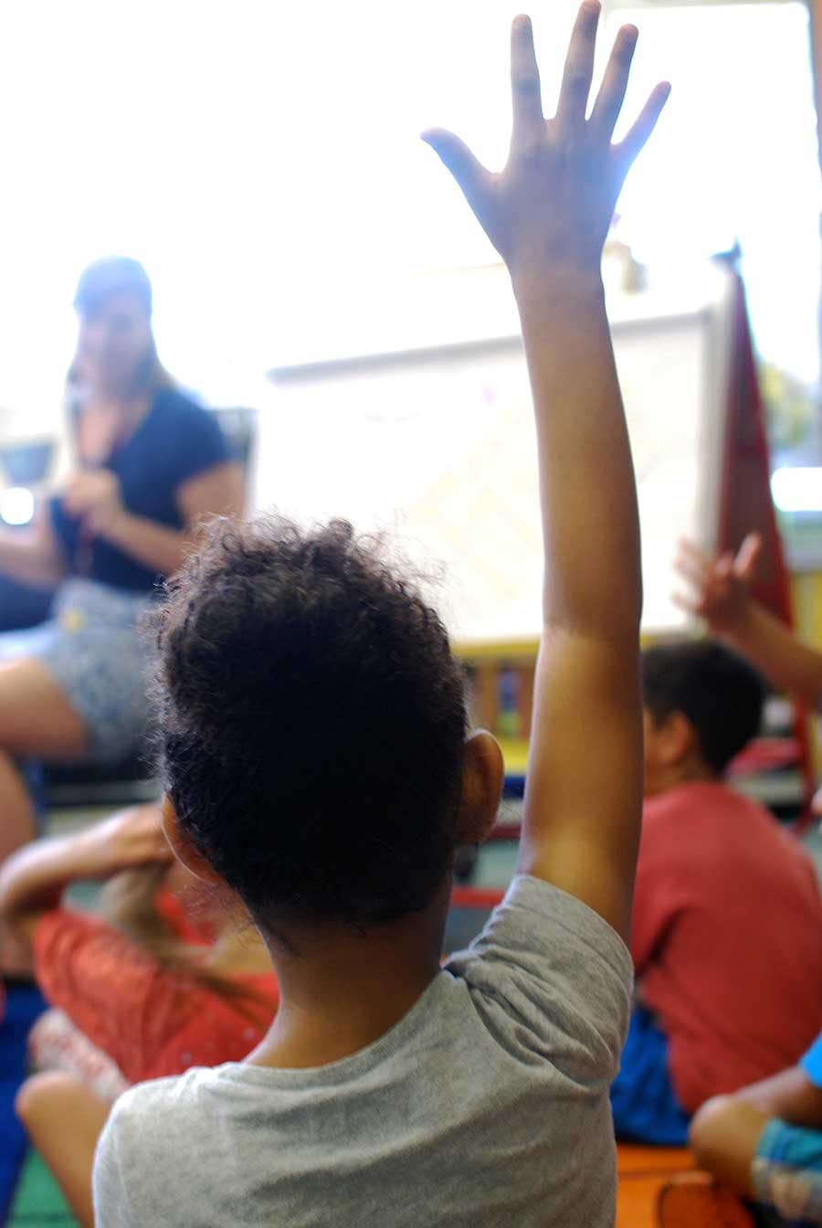 Student raising their hands