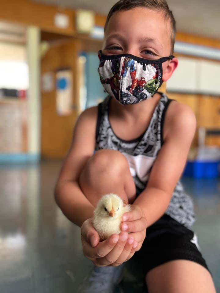 McMahon student holding a chick and wearing a mask
